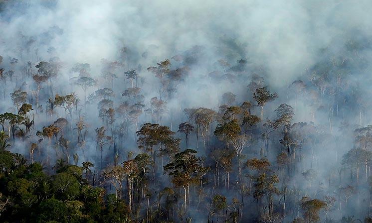 Нове дослідження: вирубка тропічних лісів в шість разів небезпечніше для клімату, ніж вважалося раніше